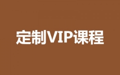 定制VIP课程