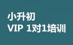 小升初VIP 1对1培训
