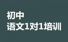 初中语文1对1培训