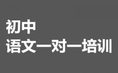 初中语文一对一培训