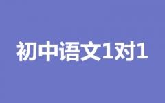 初中语文1对1