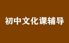 初中文化课辅导