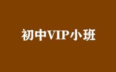初中VIP小班